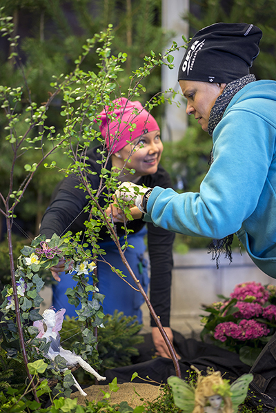 Kaksi naista valmistelevat keväällä 2015 järjestettyä Floralia-näyttelyä. He istuttavat puden taimia ruukkuihin.